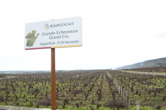 グラン・エシェゾーの畑、香り立つ銘酒のテロワール