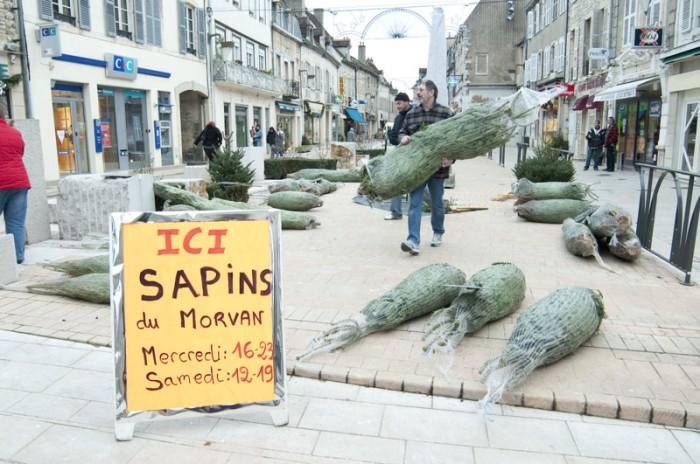 ニュイ・サン・ジョルジュ村の中心。クリスマスツリーの特設販売が始まるところ