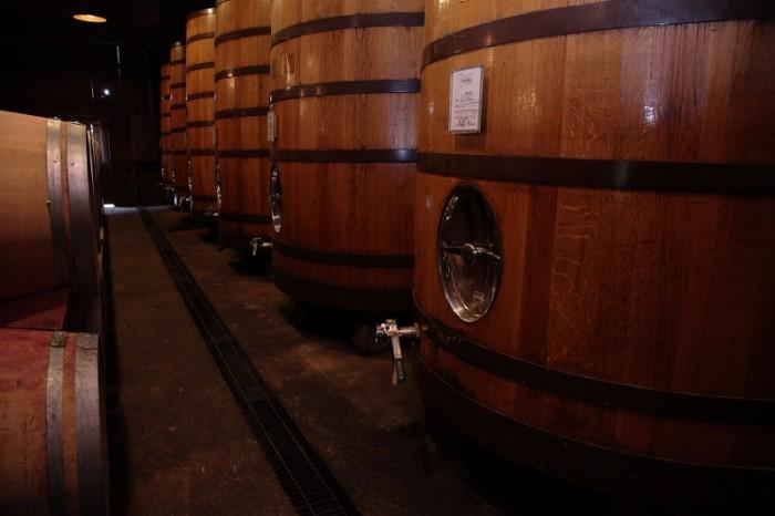 新しい木製発酵槽が並ぶセラー