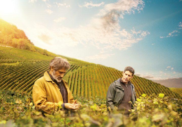 ワイン・ムービーいまどきのワイン造りのストーリー 『ブルゴーニュで会いましょう』